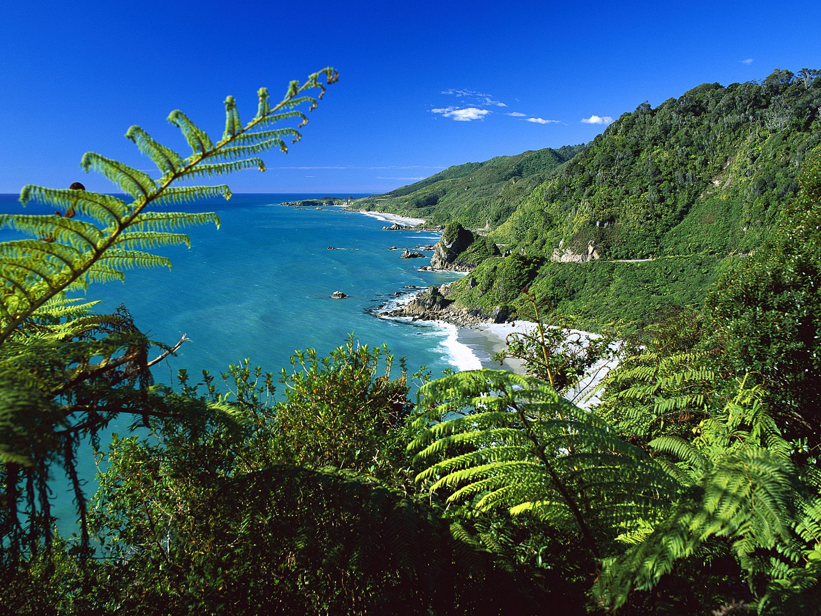 Paparoa_National_Park